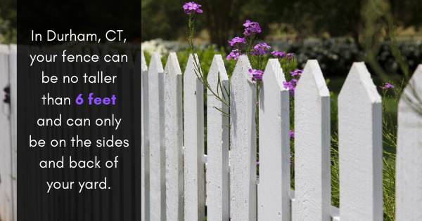 What Type of Fence is the Best for You? Here are Some Ways to Find Out!