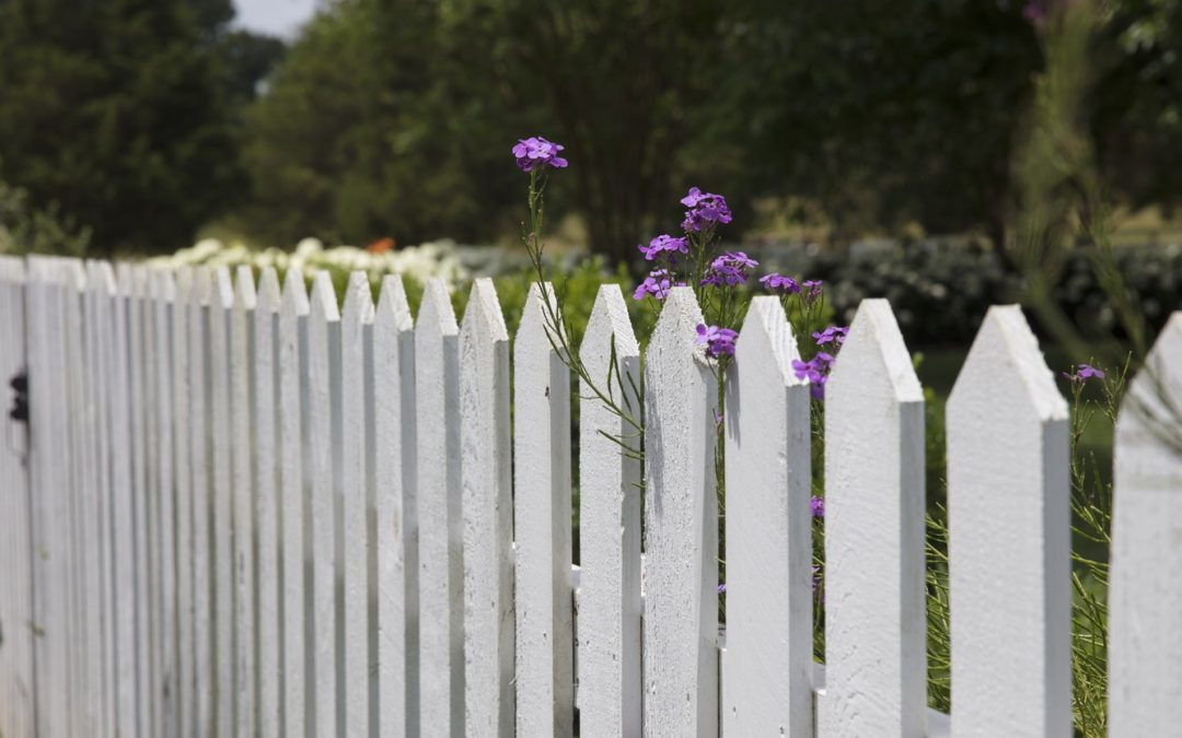 Stop, Thief: How to Burglar-Proof Your Backyard